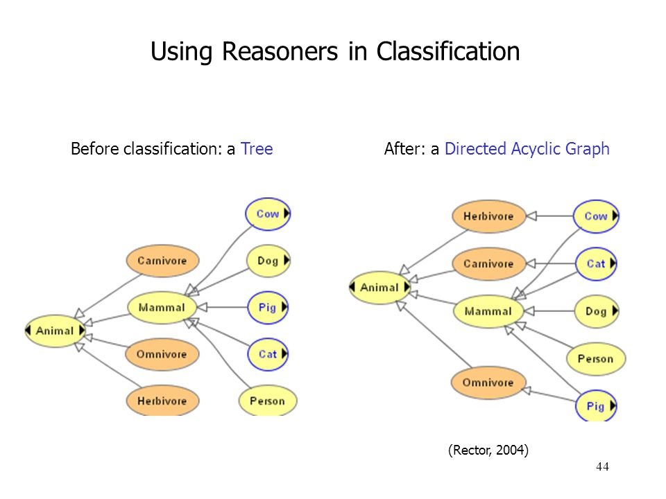 44 Using Reasoners in Classification Before classification: a TreeAfter: a Directed Acyclic Graph (Rector, 2004)