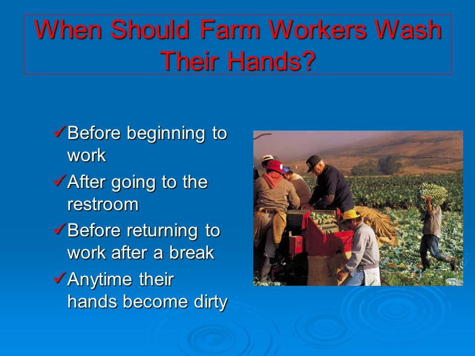 When Should Farm Workers Wash Their Hands? Before beginning to work Before beginning to work After going to the restroom After going to the restroom B