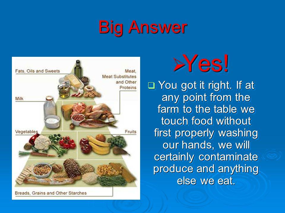 Most Common Food Parasites Giardia