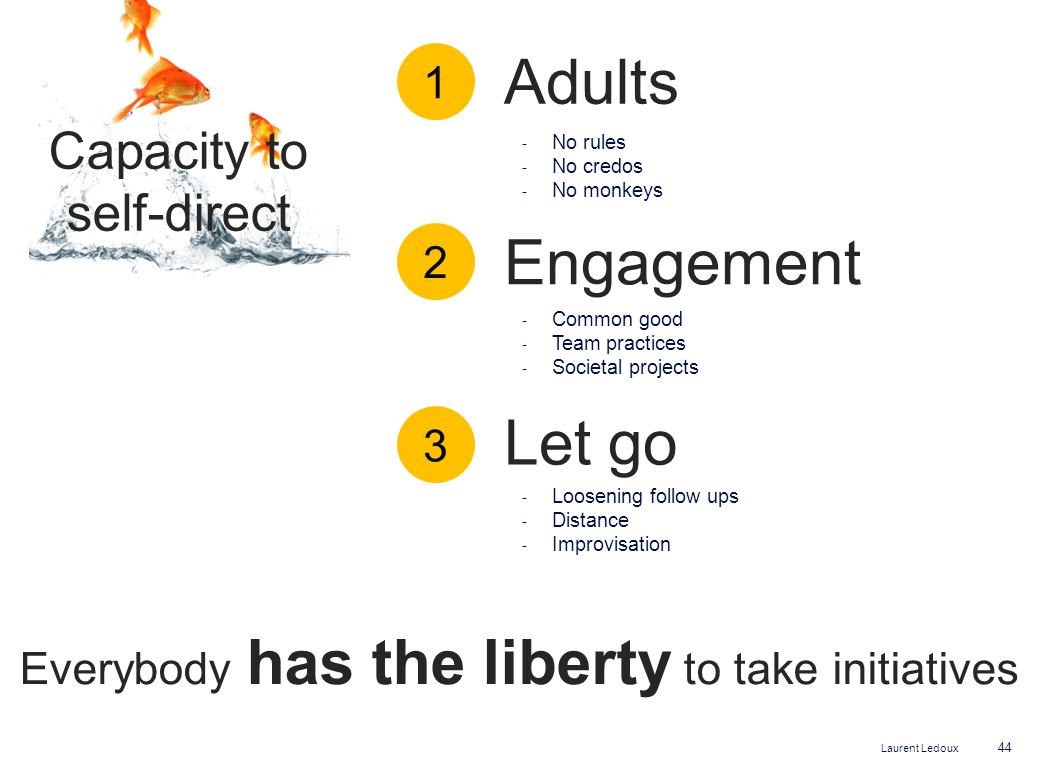Laurent Ledoux 44 Capacity to self-direct Adults Engagement Let go Everybody has the liberty to take initiatives ‐ No rules ‐ No credos ‐ No monkeys ‐ Common good ‐ Team practices ‐ Societal projects ‐ Loosening follow ups ‐ Distance ‐ Improvisation