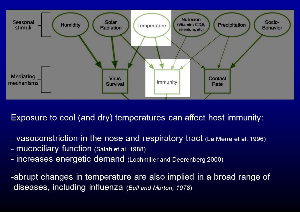 Exposure to cool (and dry) temperatures can affect host immunity: - vasoconstriction in the nose and respiratory tract (Le Merre et al. 1996) - mucoci