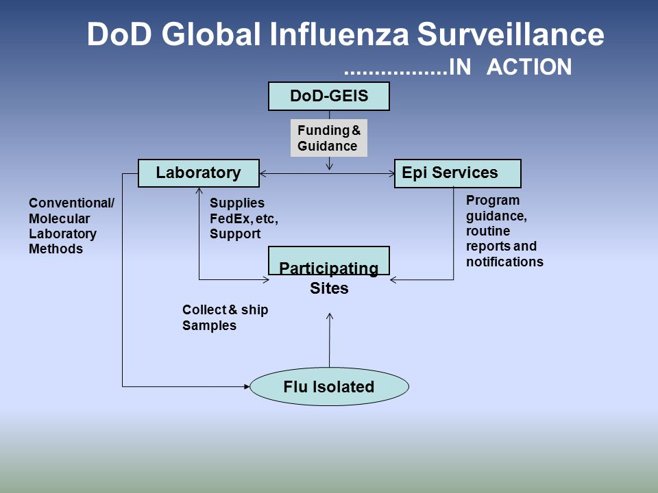 DoD Global Influenza Surveillance.................IN ACTION DoD-GEIS Epi Services Laboratory Collect & ship Samples Supplies FedEx, etc, Support Funding & Guidance Flu Isolated Conventional/ Molecular Laboratory Methods Program guidance, routine reports and notifications Participating Sites