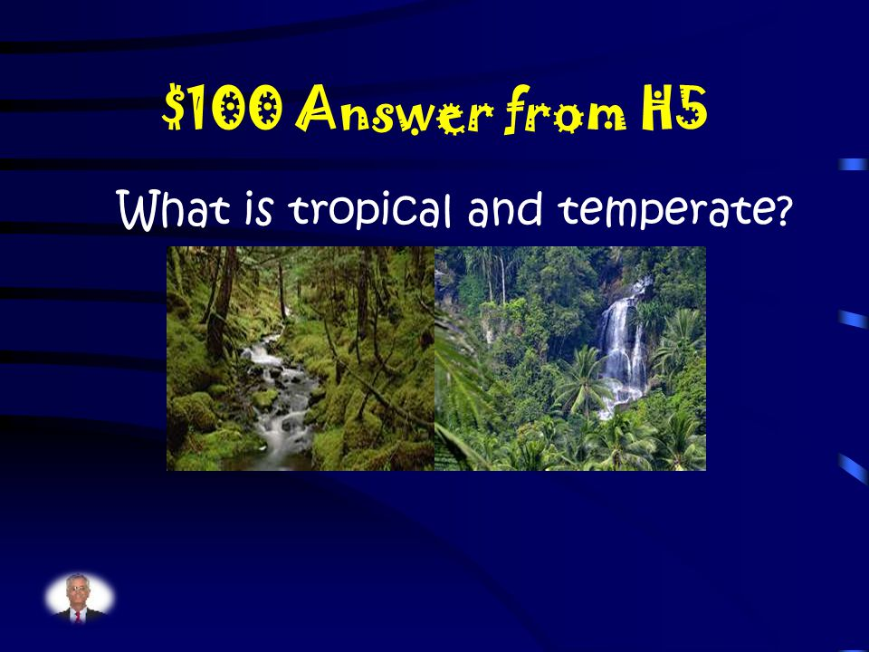 $100 Question from H5 What are the two types of climate in the rainforest