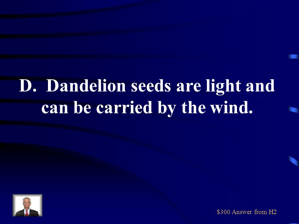 $300 Question from H2 How are dandelion seeds different from apple seeds.