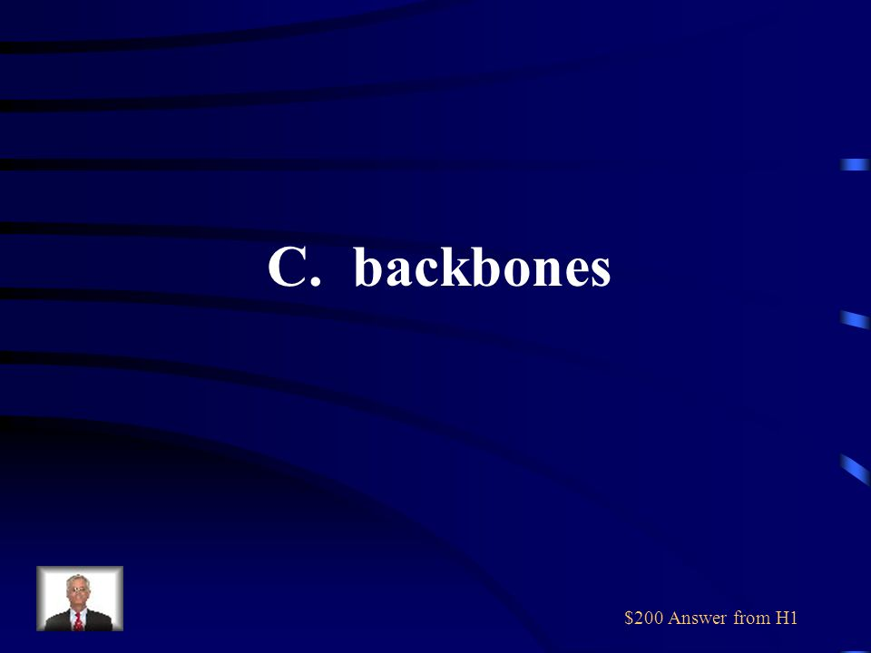 $200 Question from H1 All vertebrate animals have A. scales B. warm blood C. backbones D. hair