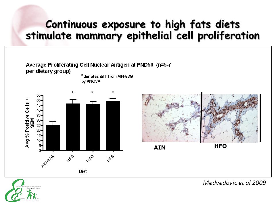 Continuous exposure to high fats diets stimulate mammary epithelial cell proliferation AIN HFO Medvedovic et al 2009