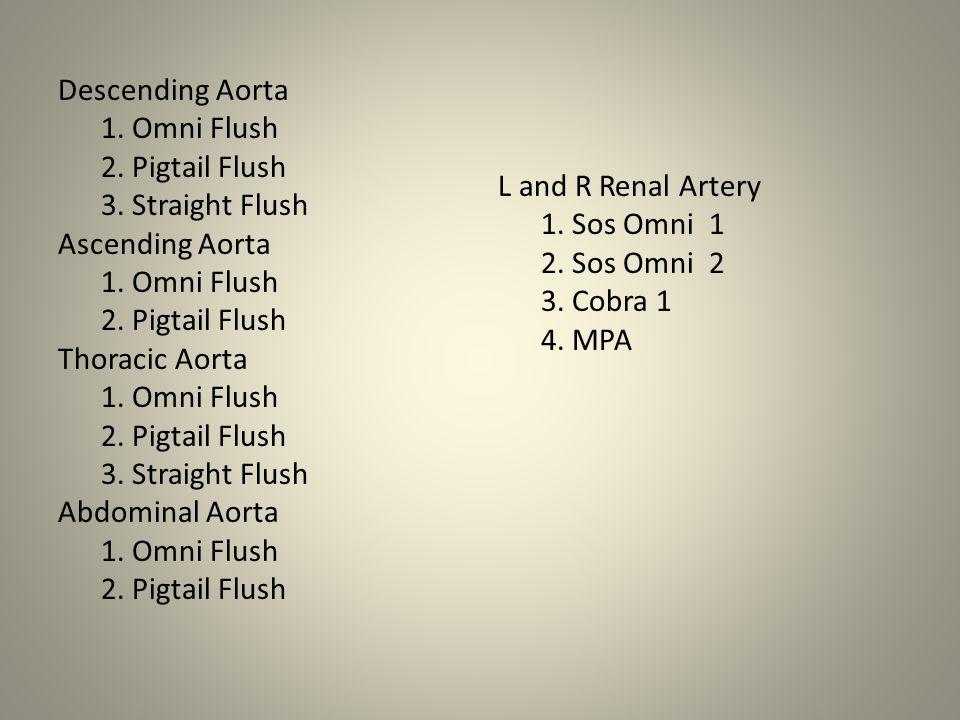 Descending Aorta 1. Omni Flush 2. Pigtail Flush 3. Straight Flush Ascending Aorta 1. Omni Flush 2. Pigtail Flush Thoracic Aorta 1. Omni Flush 2. Pigta