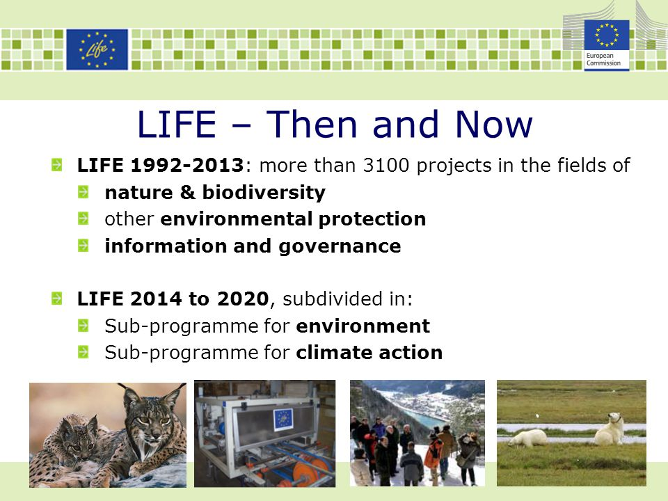 LIFE – Then and Now LIFE 1992-2013: more than 3100 projects in the fields of nature & biodiversity other environmental protection information and gove