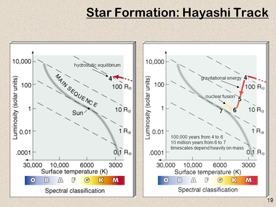 19 Star Formation: Hayashi Track gravitational energy nuclear fusion 100,000 years from 4 to 6 10 million years from 6 to 7 timescales depend heavily on mass hydrostatic equilibrium