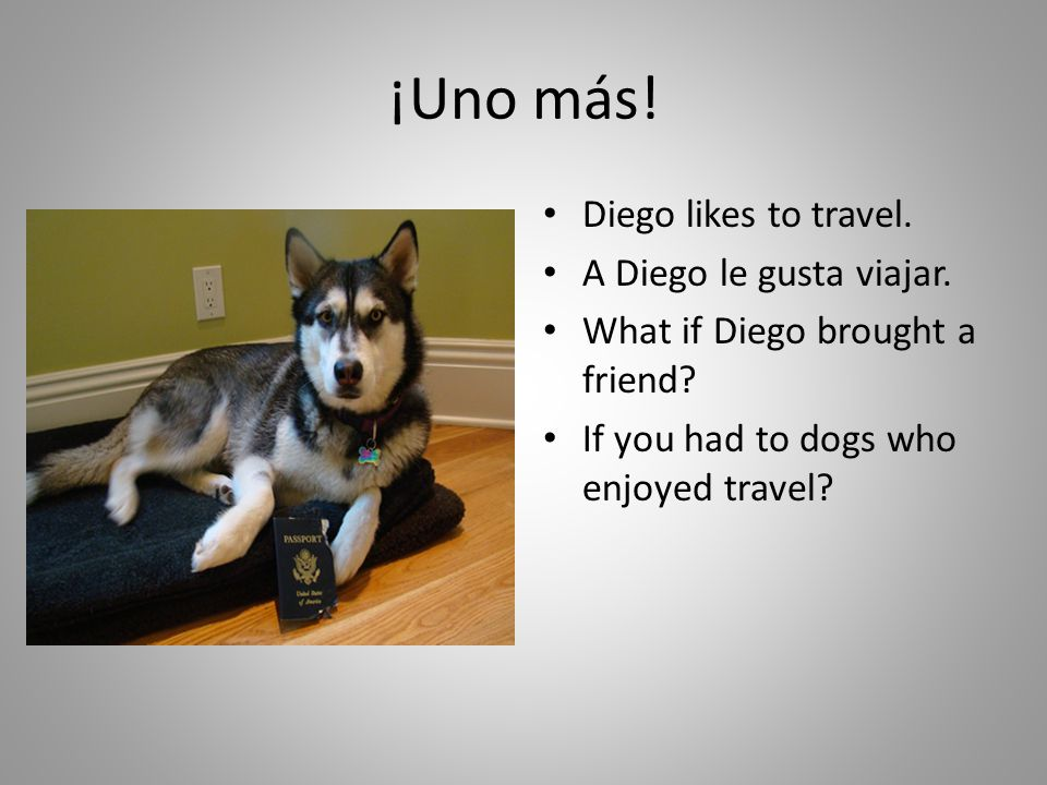 A Diego y Paco les gusta viajar.