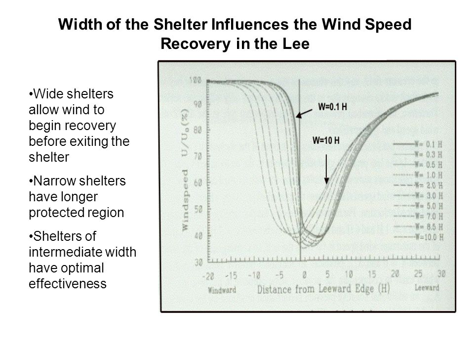 Width of the Shelter Influences the Wind Speed Recovery in the Lee Wide shelters allow wind to begin recovery before exiting the shelter Narrow shelters have longer protected region Shelters of intermediate width have optimal effectiveness
