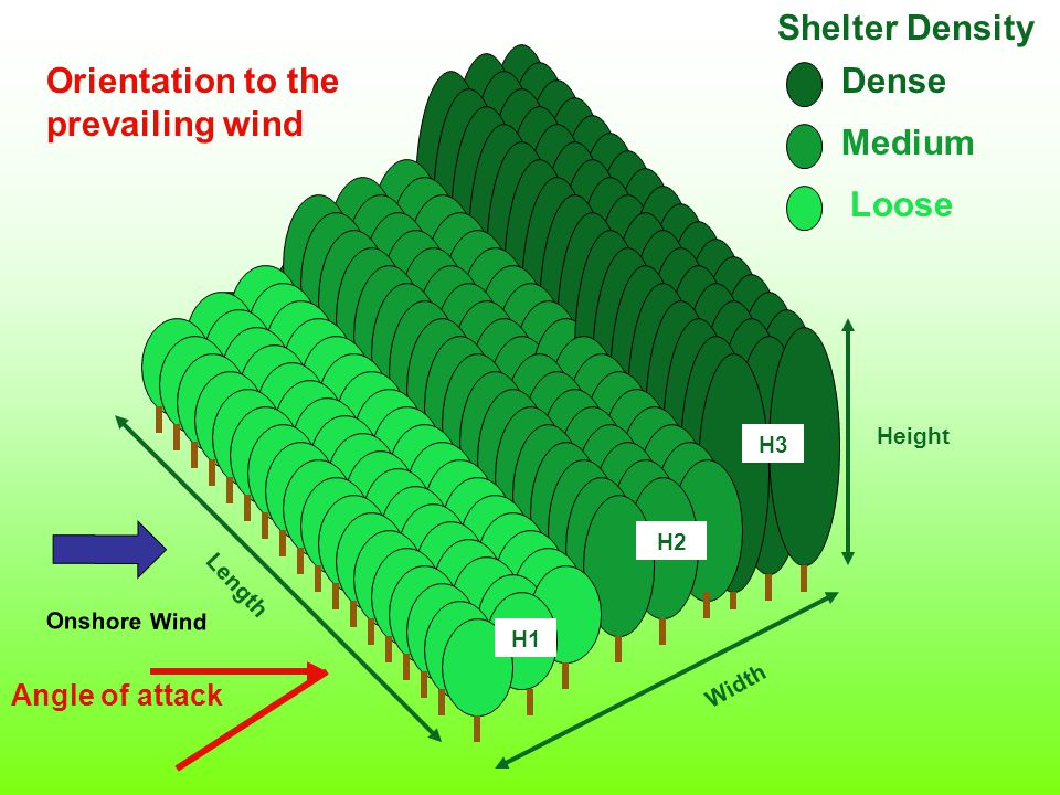 Length Width Height H1 Shelter Density Dense Medium Loose H1 H2 H3 Angle of attack Orientation to the prevailing wind Onshore Wind