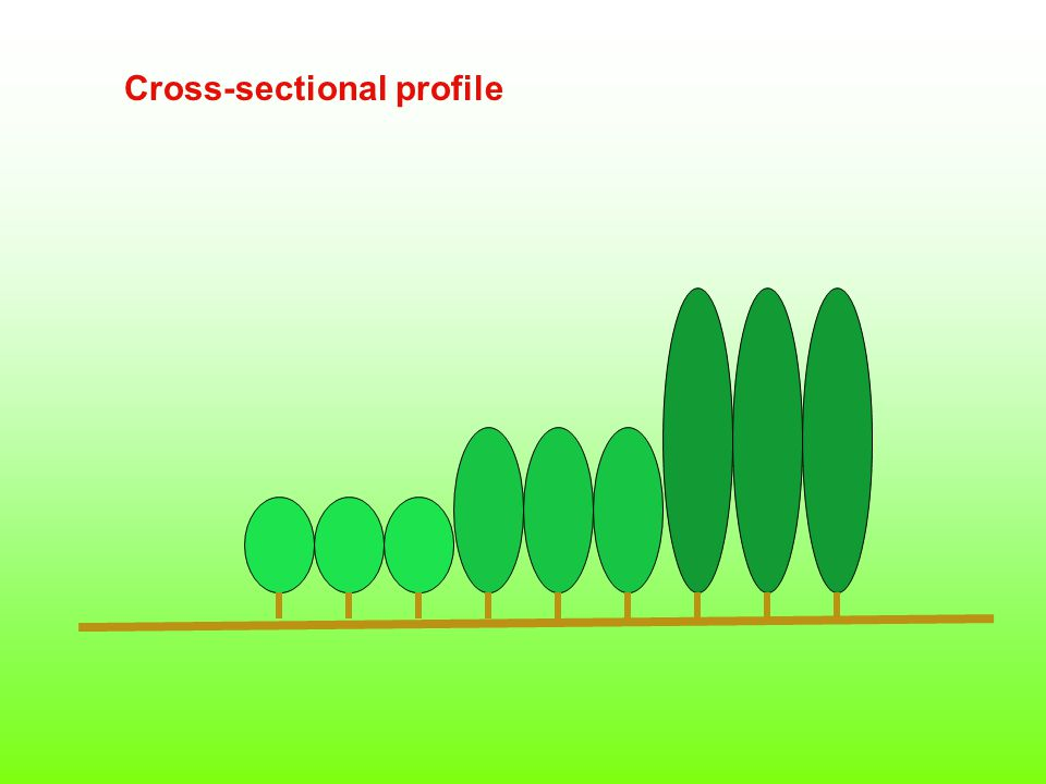 Cross-sectional profile