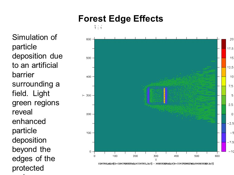 Forest Edge Effects Simulation of particle deposition due to an artificial barrier surrounding a field.