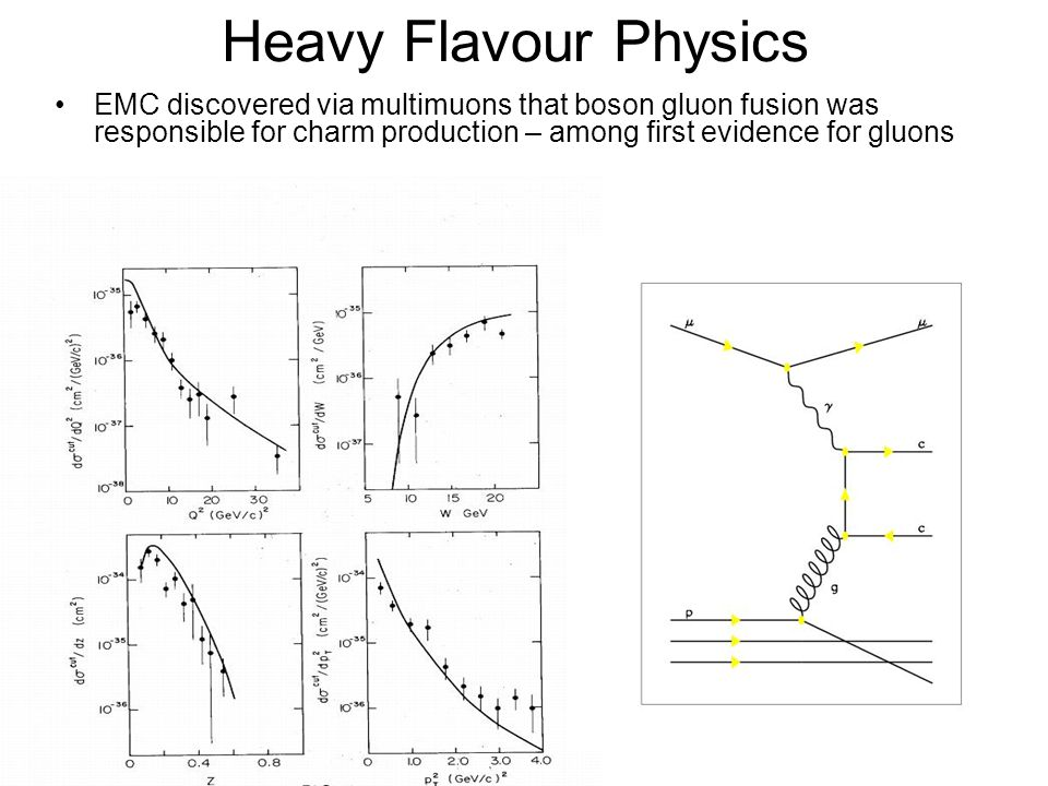 Heavy Flavour Physics EMC discovered via multimuons that boson gluon fusion was responsible for charm production – among first evidence for gluons