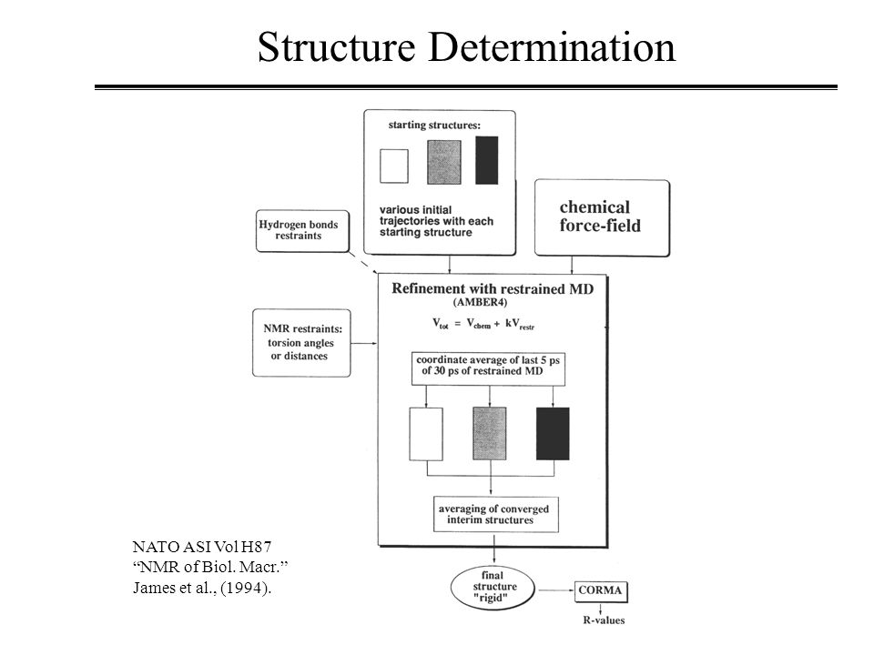 Structure Determination NATO ASI Vol H87 NMR of Biol. Macr. James et al., (1994).