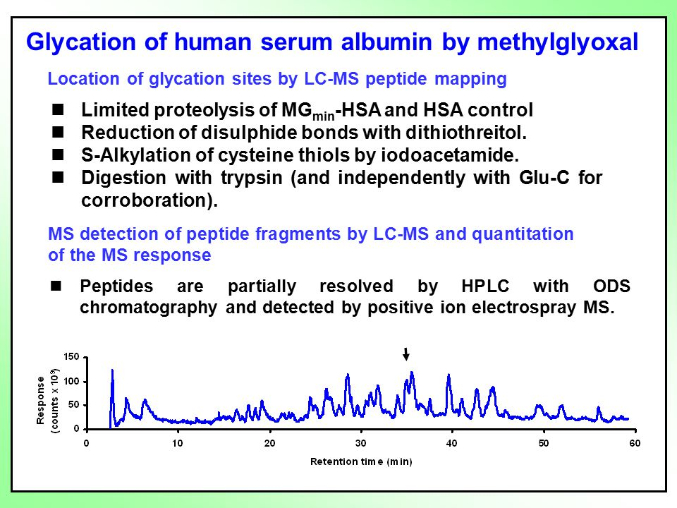 Glycation of human serum albumin by methylglyoxal Location of glycation sites by LC-MS peptide mapping MS detection of peptide fragments by LC-MS and quantitation of the MS response Peptides are partially resolved by HPLC with ODS chromatography and detected by positive ion electrospray MS.