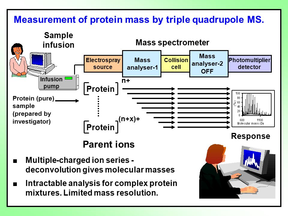 Measurement of protein mass by triple quadrupole MS.