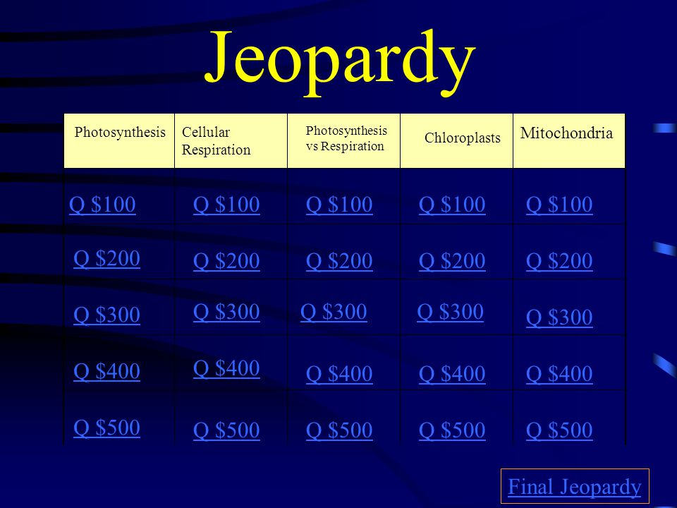 Jeopardy PhotosynthesisCellular Respiration Photosynthesis vs Respiration Chloroplasts Mitochondria Q $100 Q $200 Q $300 Q $400 Q $500 Q $100 Q $200 Q $300 Q $400 Q $500 Final Jeopardy