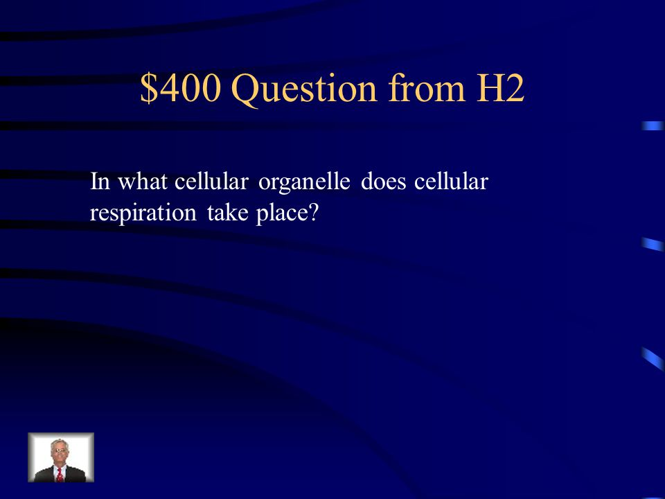 $300 Answer from H2 Carbon dioxide