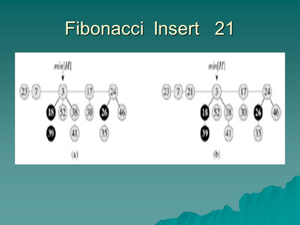Fibonacci Insert 21