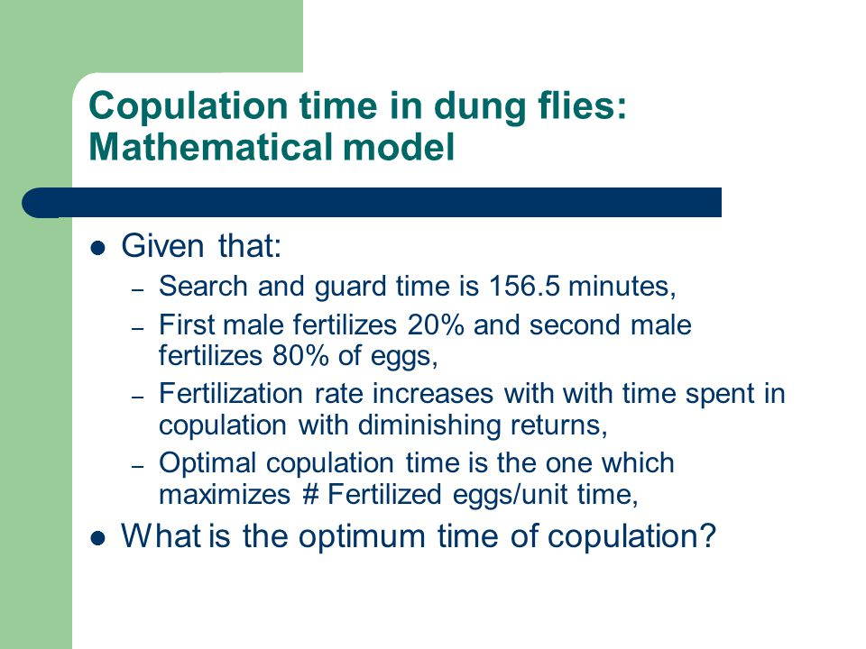 Copulation time in dung flies: Mathematical model Given that: – Search and guard time is 156.5 minutes, – First male fertilizes 20% and second male fertilizes 80% of eggs, – Fertilization rate increases with with time spent in copulation with diminishing returns, – Optimal copulation time is the one which maximizes # Fertilized eggs/unit time, What is the optimum time of copulation
