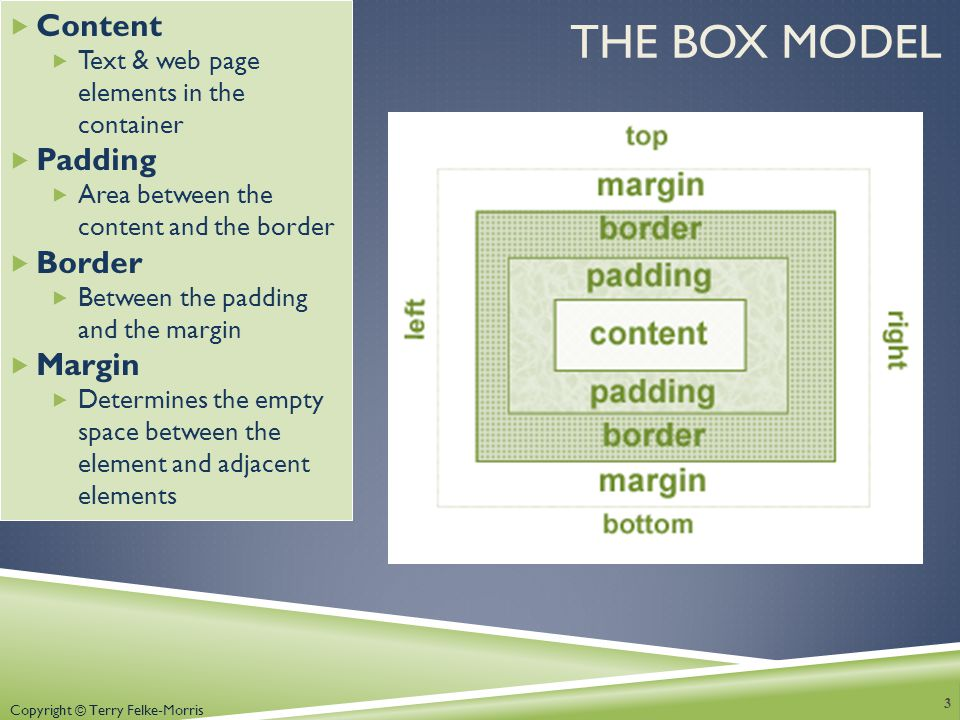 Copyright © Terry Felke-Morris THE BOX MODEL  Content  Text & web page elements in the container  Padding  Area between the content and the border  Border  Between the padding and the margin  Margin  Determines the empty space between the element and adjacent elements 3