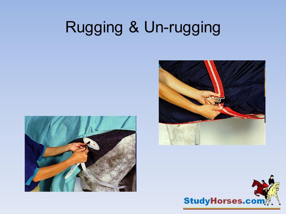 Rugging & Un-rugging