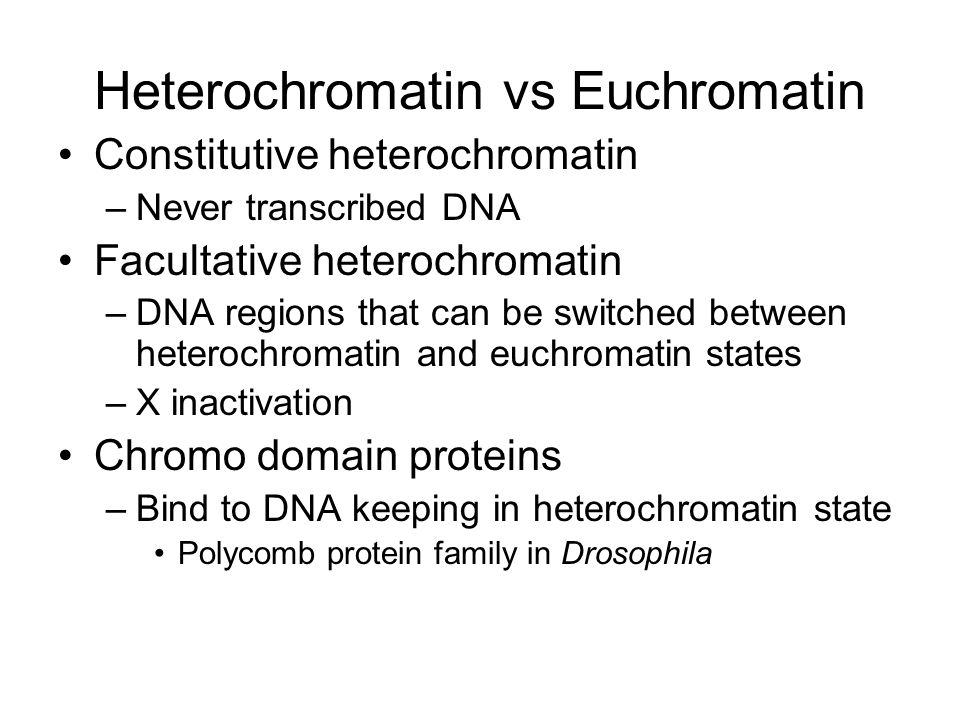 Heterochromatin vs Euchromatin Constitutive heterochromatin –Never transcribed DNA Facultative heterochromatin –DNA regions that can be switched between heterochromatin and euchromatin states –X inactivation Chromo domain proteins –Bind to DNA keeping in heterochromatin state Polycomb protein family in Drosophila