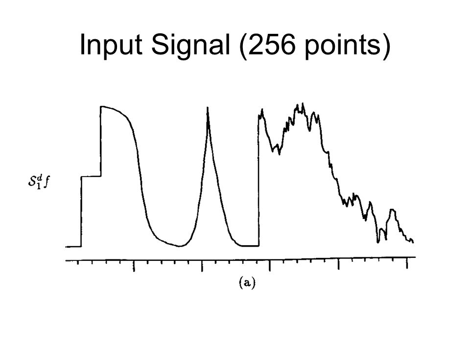 Input Signal (256 points)