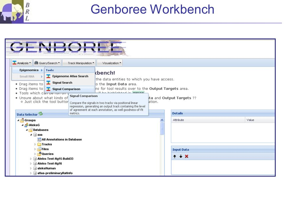 Preliminary Exercises 1.Go to Genboree Tools>>Workbench 2.