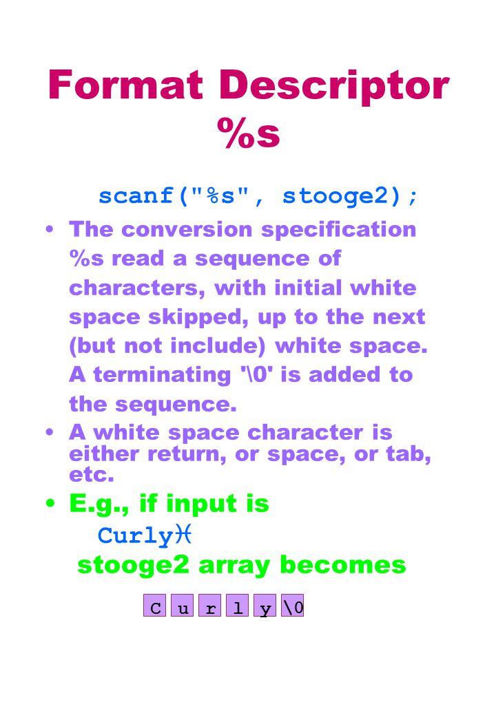 Format Descriptor %s scanf(