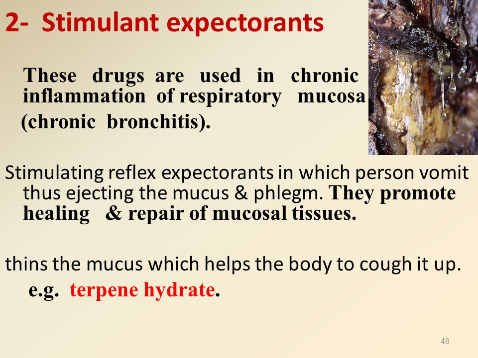 2- Stimulant expectorants These drugs are used in chronic inflammation of respiratory mucosa (chronic bronchitis). Stimulating reflex expectorants in