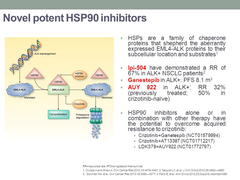 Novel potent HSP90 inhibitors  HSPs are a family of chaperone proteins that shepherd the aberrantly expressed EML4-ALK proteins to their subcellular location and substrates 1  Ipi-504 have demonstrated a RR of 67% in ALK+ NSCLC patients 2  Ganestepib in ALK+: PFS 8.1 m 3  AUY 922 in ALK+: RR 32% (previously treated; 50% in crizotinib-naïve)  HSP90 inhibitors alone or in combination with other therapy have the potential to overcome acquired resistance to crizotinib:  Crizotinib+Ganetespib (NCT01579994)  Crizotinib+AT13387 (NCT01712217)  LDK378+AUY922 (NCT01772797) RR=response rate; PFS=progression free survival 1.