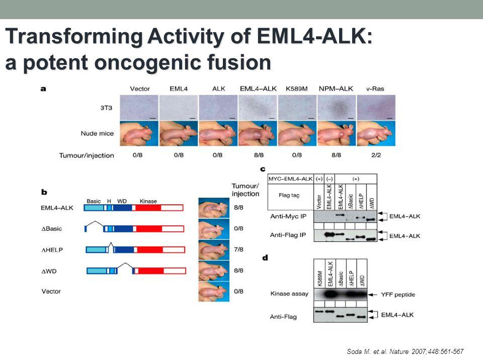 Transforming Activity of EML4-ALK: a potent oncogenic fusion Soda M. et.al. Nature 2007;448:561-567