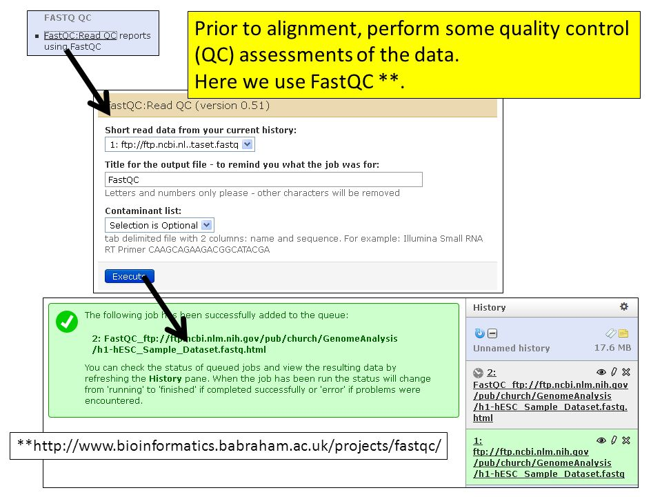 FastQC provides a wide range of QC checks. Here we will only look at Per base sequence quality