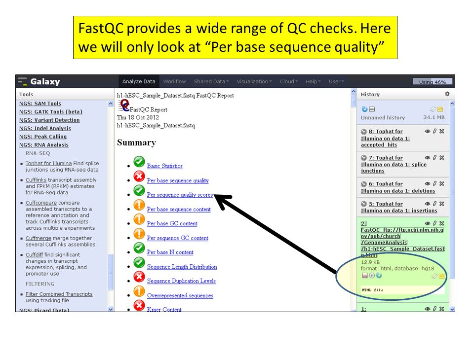 "FastQC provides a wide range of QC checks. Here we will only look at ""Per base sequence quality"""