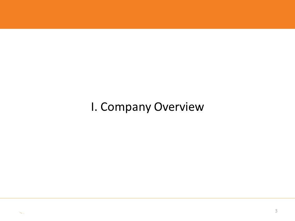3 I. Company Overview