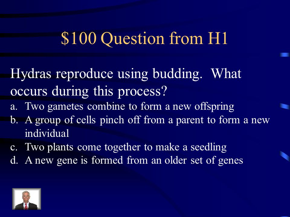 Jeopardy Reproduction Punnett Squares & Pedigrees Vocabulary Cell Division Genetic Inheritance & Factors Q $100 Q $200 Q $300 Q $400 Q $500 Q $100 Q $200 Q $300 Q $400 Q $500 Final Jeopardy