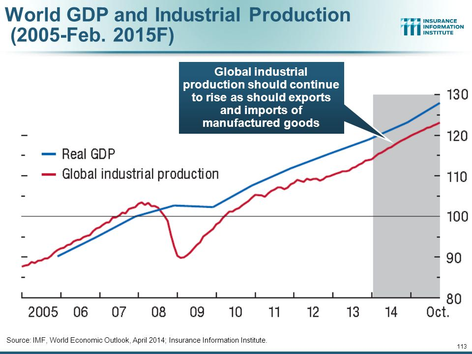12/01/09 - 9pmeSlide – P6466 – The Financial Crisis and the Future of the P/C 113 World GDP and Industrial Production (2005-Feb.