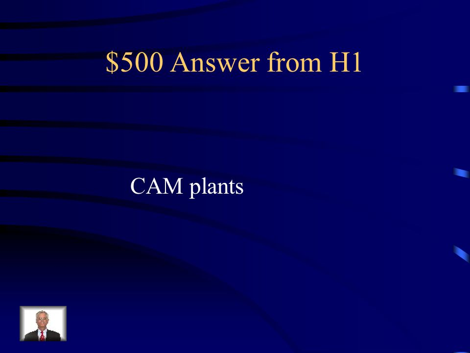$500 Question from H1 These plants adapted to dry climates and use A different strategy to obtain carbon dioxide While minimizing water loss