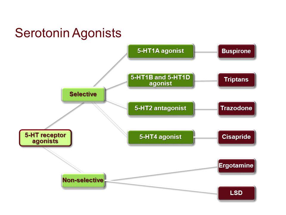 Serotonin Agonists Non-selectiveNon-selective 5-HT receptor agonists SelectiveSelective 5-HT1A agonist BuspironeBuspirone 5-HT1B and 5-HT1D agonist 5-