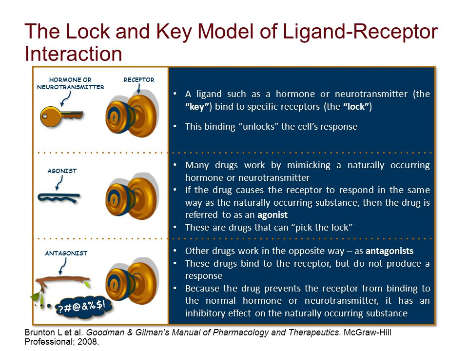 The Lock and Key Model of Ligand-Receptor Interaction Brunton L et al. Goodman & Gilman's Manual of Pharmacology and Therapeutics. McGraw-Hill Profess