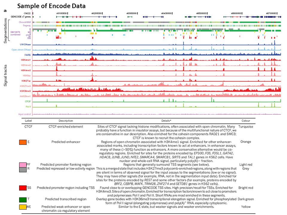 Sample of Encode Data