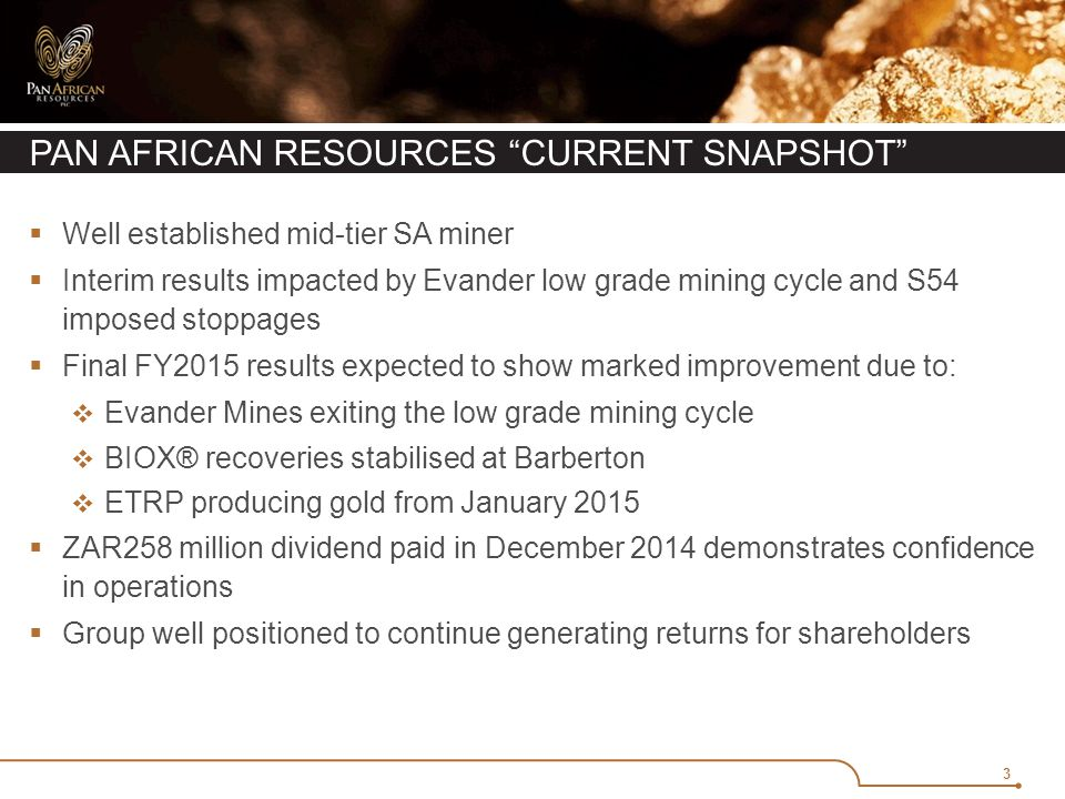3 PAN AFRICAN RESOURCES CURRENT SNAPSHOT  Well established mid-tier SA miner  Interim results impacted by Evander low grade mining cycle and S54 imposed stoppages  Final FY2015 results expected to show marked improvement due to:  Evander Mines exiting the low grade mining cycle  BIOX® recoveries stabilised at Barberton  ETRP producing gold from January 2015  ZAR258 million dividend paid in December 2014 demonstrates confidence in operations  Group well positioned to continue generating returns for shareholders