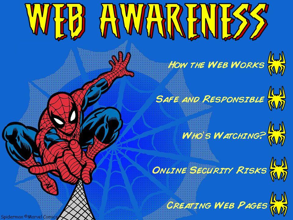 Spiderman ©Marvel Comics Online Security Risks (Part 2)