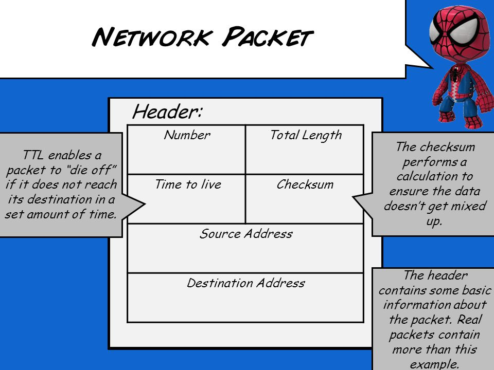 Header: Network Packet NumberTotal Length Time to liveChecksum Source Address Destination Address The header contains some basic information about the packet.