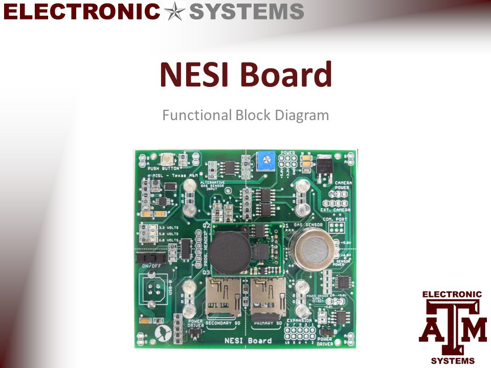 ELECTRONIC SYSTEMS NESI Board Functional Block Diagram