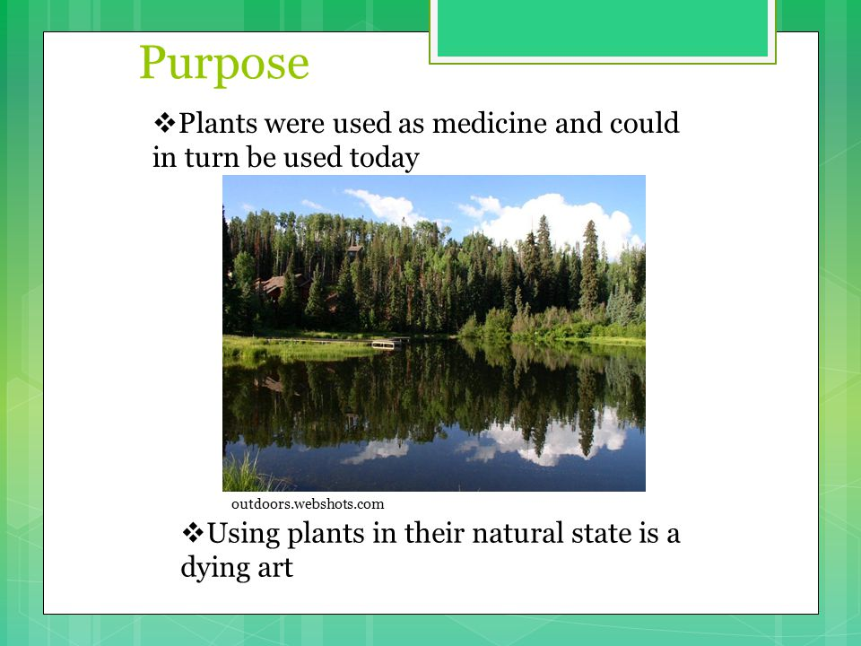 Purpose  Plants were used as medicine and could in turn be used today  Using plants in their natural state is a dying art outdoors.webshots.com