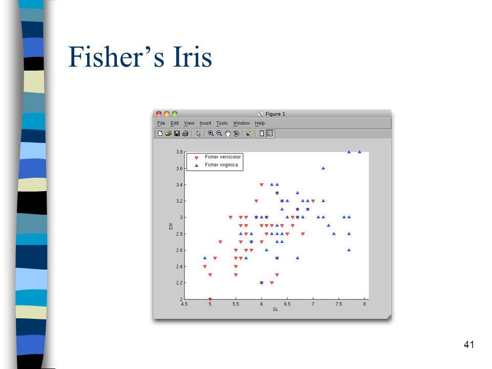 Fisher's Iris 41